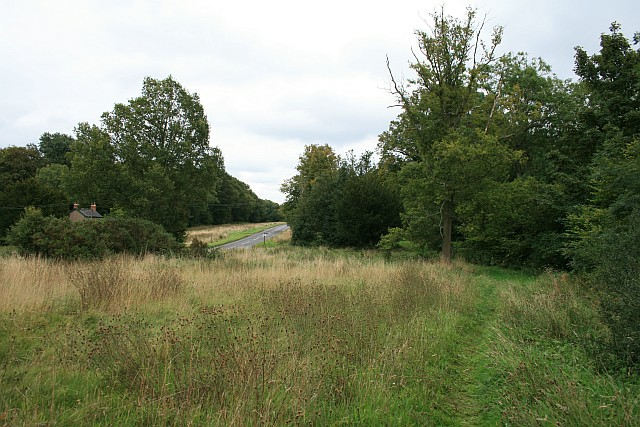 Ranmore Common Road: the pond