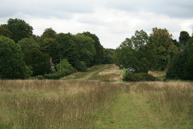 Ranmore Common Road: towards Rose Cottage