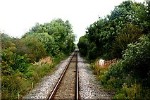 SP5720 : Branch line to Bicester by Steve Daniels