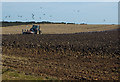 TA2933 : Ploughing near Hilston by Paul Harrop