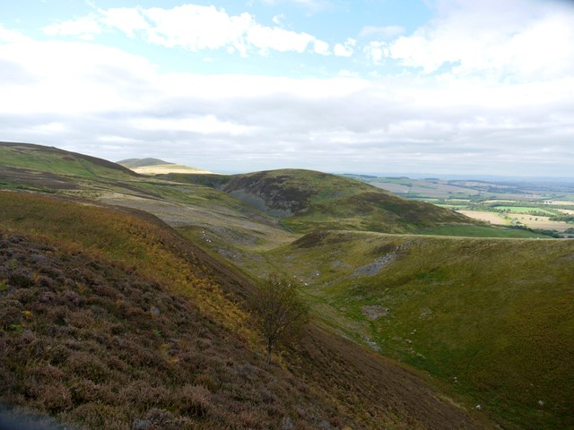 Deep cleugh on south side of Humbleton Hill