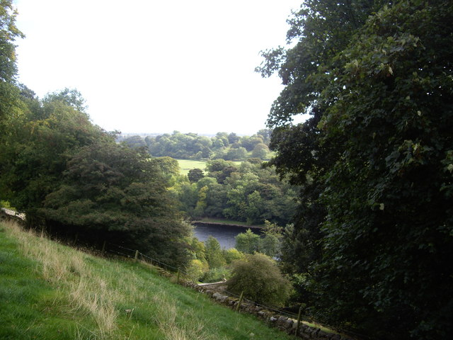 A glimpse of the River Tees