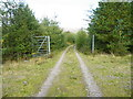 NH2911 : Track with Gate Crossing Old MilitaryRoad by Sarah McGuire