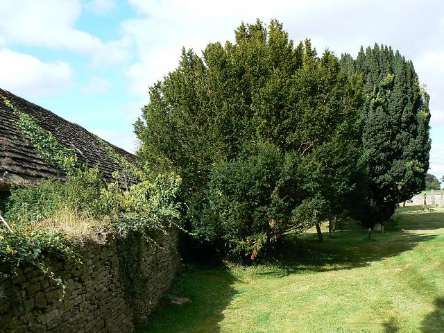 Barn and churchyard, Coates