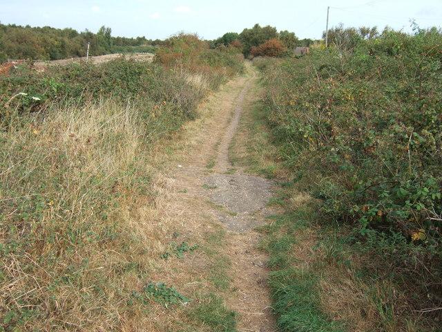 Footpath along the old railway line, Dersingham