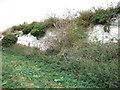 TF6933 : Abandoned chalk quarry near Snettisham by Richard Humphrey
