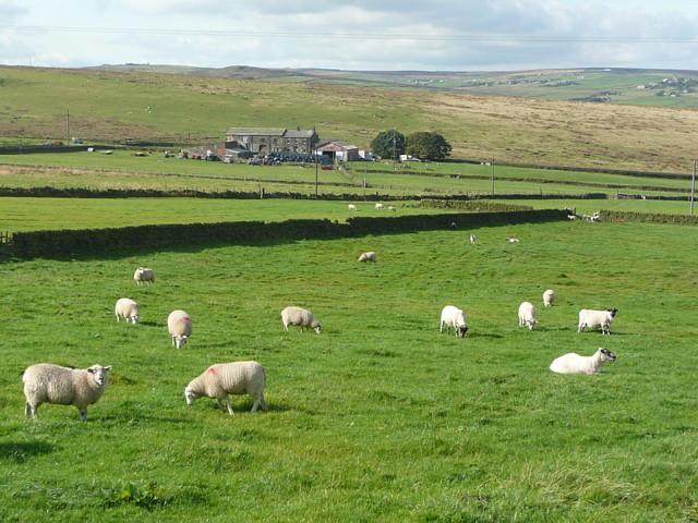 Lower Rough Head Farm, Erringden