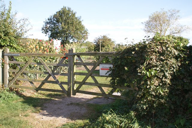 Gate to the allotments off Trent Lane