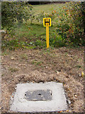 TG0524 : Fire Hydrant on Reepham Road by Geographer