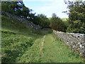 NY5415 : Access path to Shap Abbey by PAUL FARMER