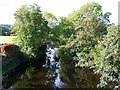 NY5217 : View of River Lowther from road bridge at Bampton Grange by PAUL FARMER