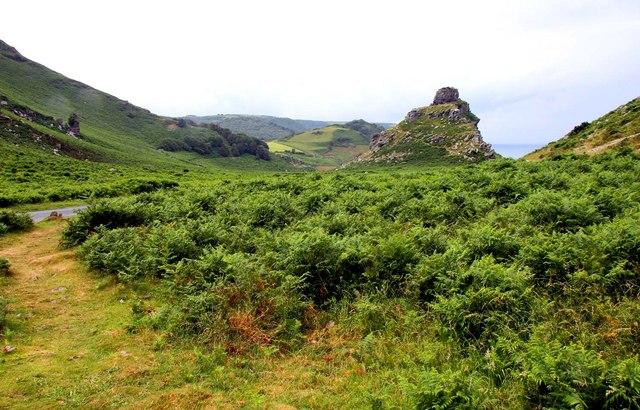 The Valley of Rocks near Lynton