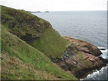 SW9881 : Above Greengarten Cove by Philip Halling