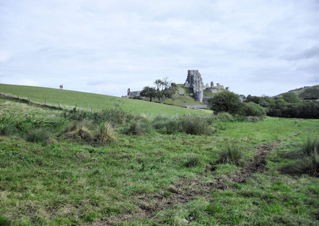 South of Corfe Castle