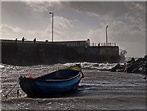 NX3343 : Port William harbour by David Baird
