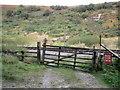 SE8495 : Gateway in Newtondale by John S Turner