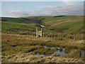 SN8693 : Bog and stile on Llechwedd Du by Nigel Brown