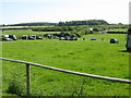 TR3050 : Looking E across paddocks towards the A256 by Nick Smith
