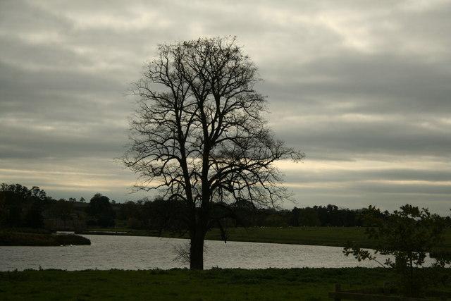 Blatherwicke Lake