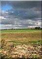 TF0293 : Towards Hooks Farm by Kate Nicol