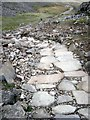 NY2208 : Repaired Footpath by Colin Kinnear