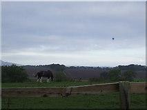 NT3160 : Rural scene. by norman hyett