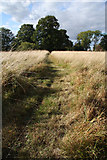 TL8063 : Path across field at Little Saxham by Bob Jones