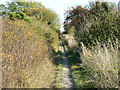 SU0065 : Byway to the Mid Wilts Way, Bromham CP by Brian Robert Marshall