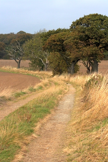 Footpath and Track to Grindon Cottages