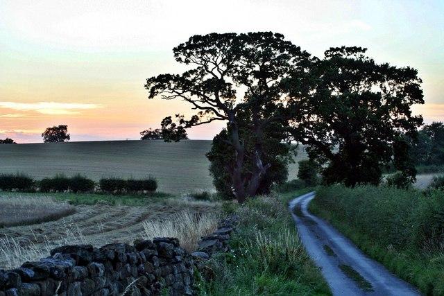 Bank Foot Lane