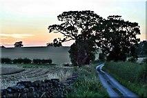 NZ5906 : Bank Foot Lane by Paul Buckingham