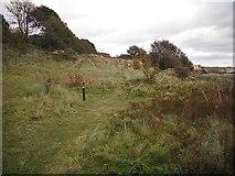NO4102 : Fife Coast Path, Lundin Links by Richard Webb