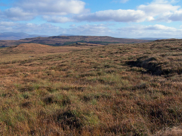 Moorland in Waternish