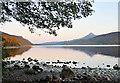NN6058 : North shore of Loch Rannoch by Dr Richard Murray