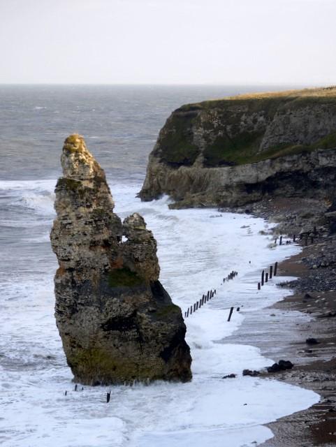 Magnesian limestone stack, Dawdon Chemical Beach