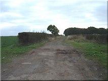 SE8947 : Green Lane (Kipling Cotes Racecourse) by JThomas