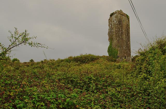 Castles of Munster: Cloondooan, Clare (1)