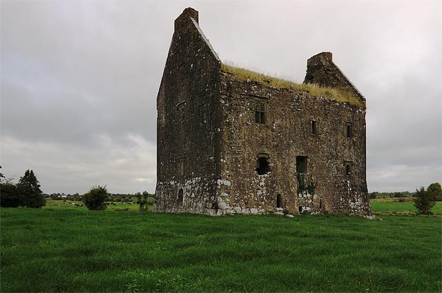 Castles of Munster: Ballynahinch, Limerick (1)