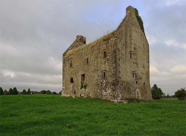 Castles of Munster: Ballynahinch, Limerick (2)