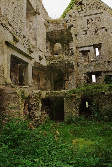 Castles of Munster: Ballynahinch, Limerick (3)