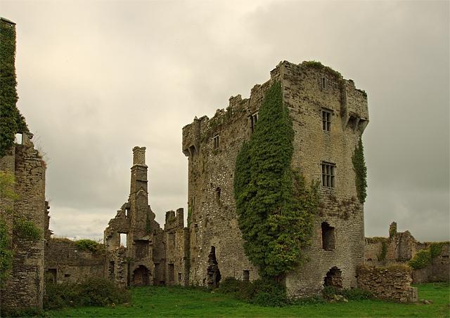 Castles of Munster: Ballygrennan, Limerick (2)