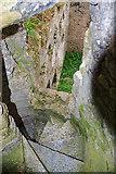 R4138 : Castles of Munster: Lissamota, Limerick (4) by Mike Searle