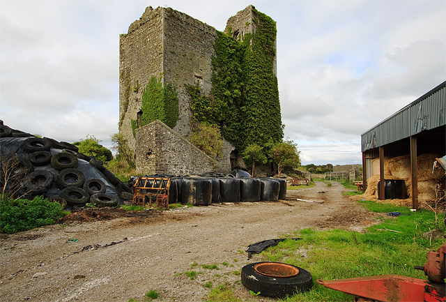 Castles of Munster: Lisnacullia, Limerick