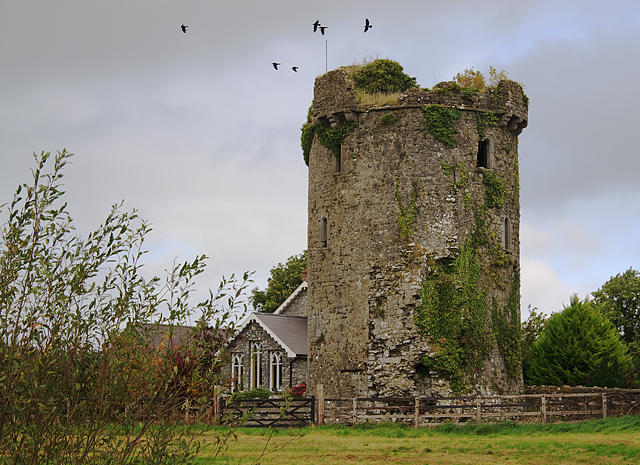 Castles of Munster: Synone, Tipperary