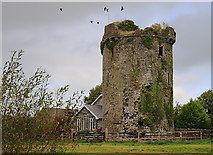 S0846 : Castles of Munster: Synone, Tipperary by Mike Searle