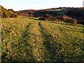 NZ0658 : Farmland below Apperley Fell by Clive Nicholson