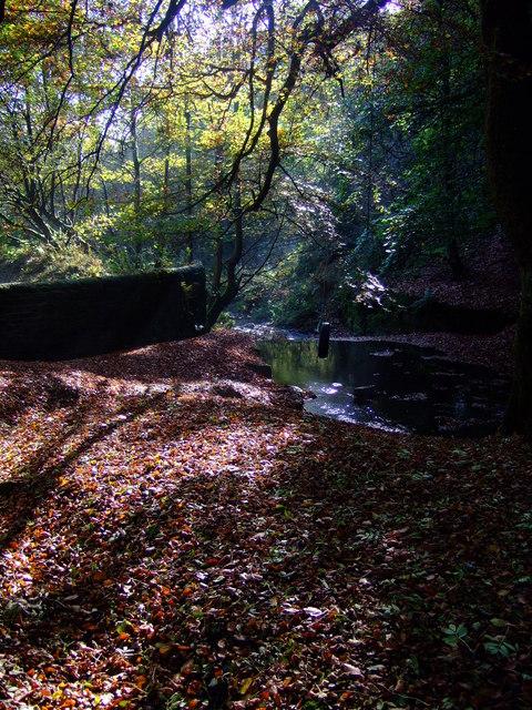 Woodland & Merrydale brook, Slaithwaite