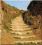 SW5842 : Steps from the beach to the coastpath near Godrevy Farm by Andy F