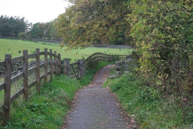 Undulating fence