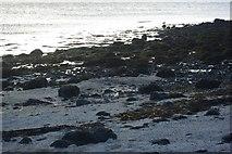 NG2254 : Coral Beach by Fractal Angel